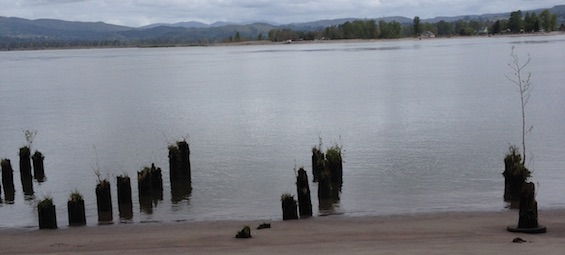 Columbia River, Clatsop County